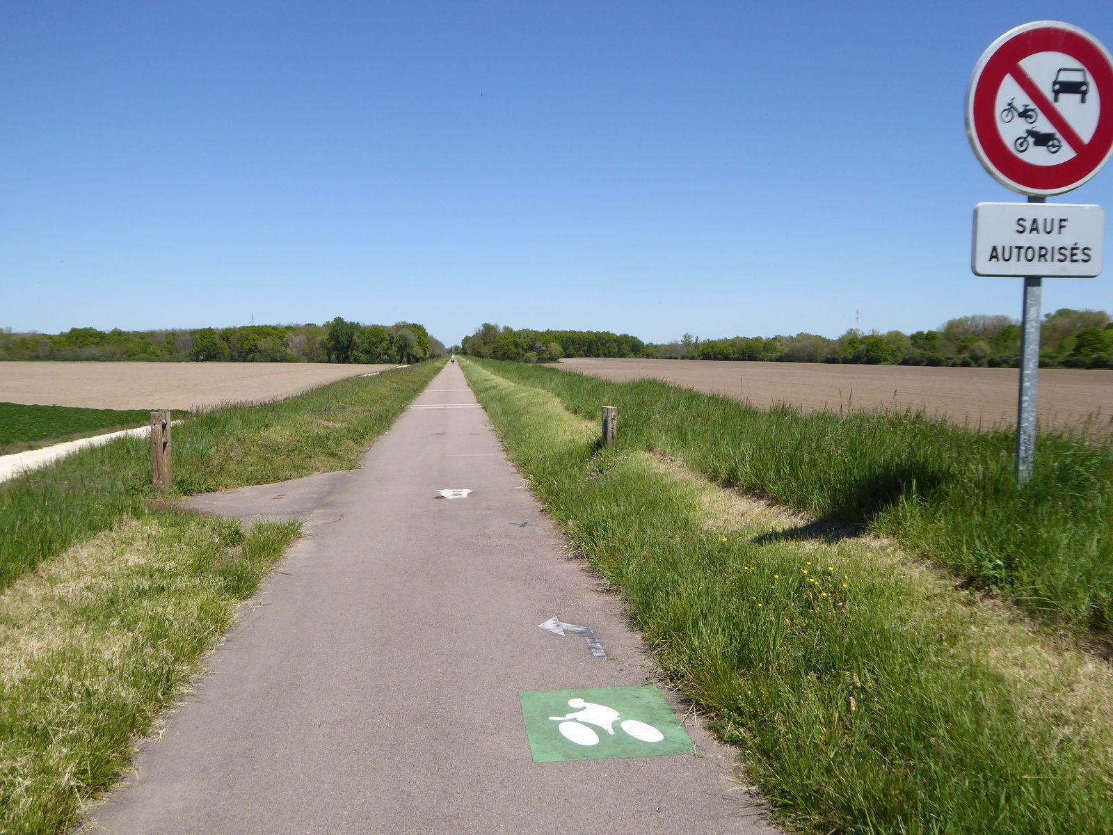 La Loire à vélo: Nevers - Orléans