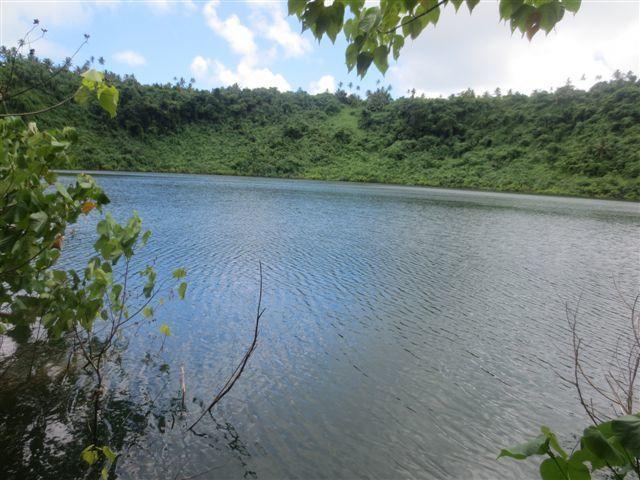 Aventure à Lanutavake - entrée dans la forêt - nid de guêpes - enchevetrement des arbres - le lac - l'équipe - le plongeon