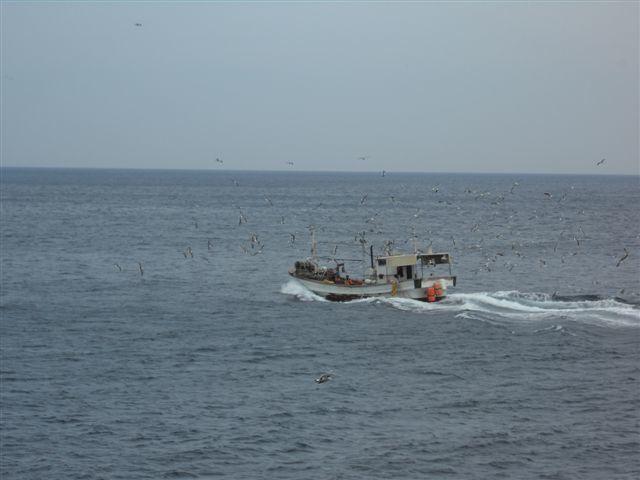 L'île d'Ulleung-do au large de la corée du Sud, dans la Mer du Japon  ( 3ème série de photos ).