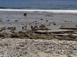 quelques photos de Futuna