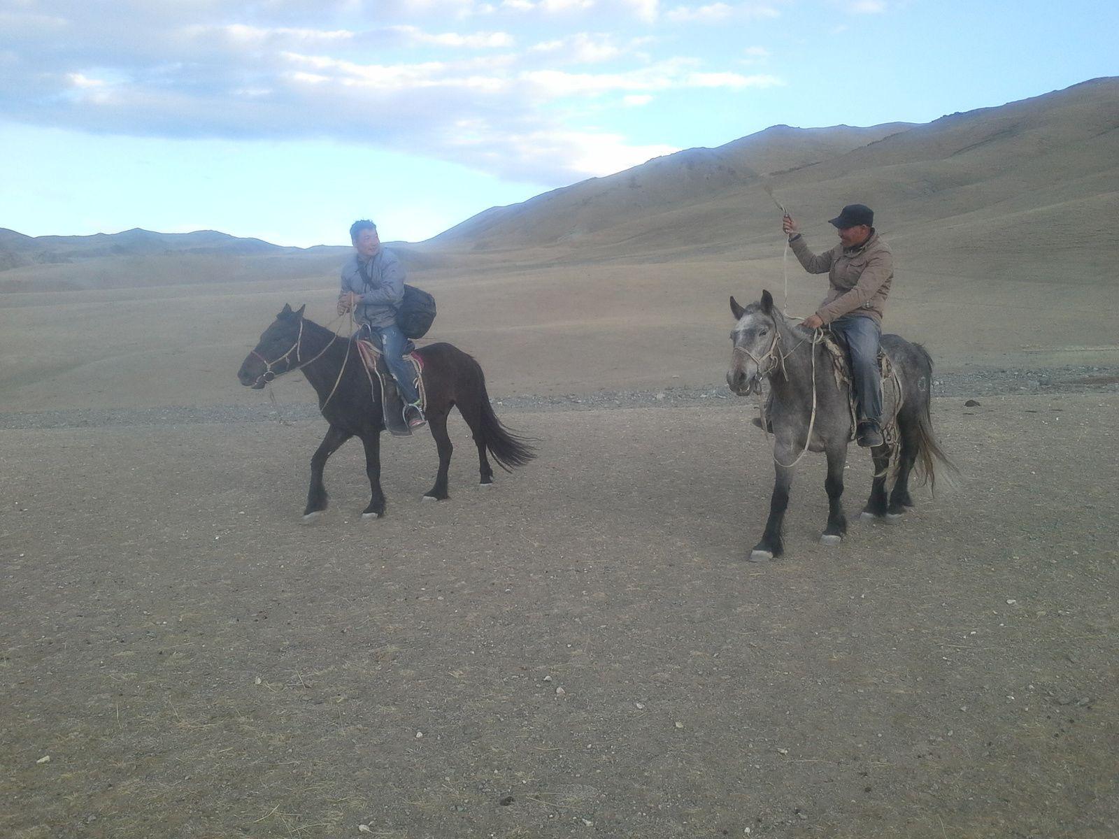 le cheval mongole, le compagnon indispensable