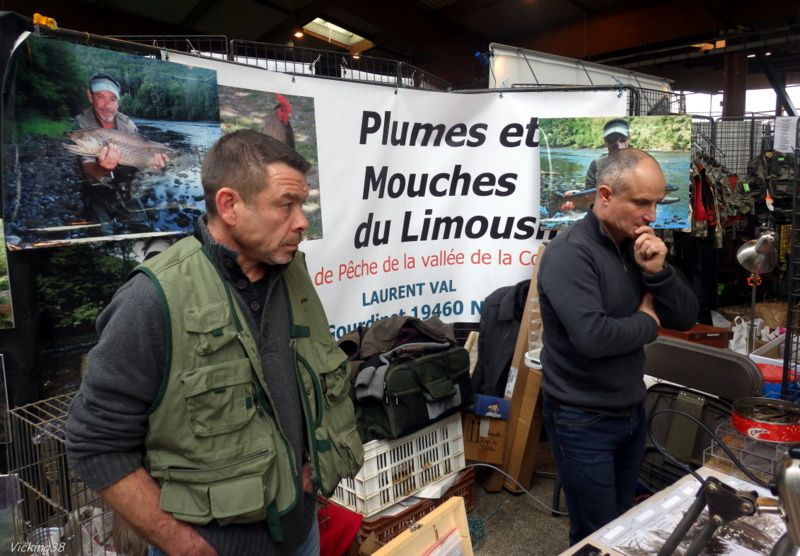 SALON DE LA MOUCHE DE SAINT ETIENNE 2017 (RÉSUMÉ) . . .