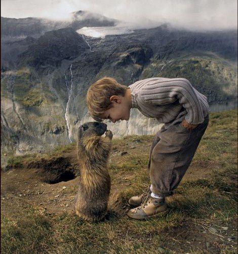 Le garçon qui parle aux marmottes.