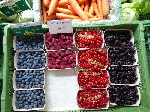 Si nous allions faire notre marché à Berne ?