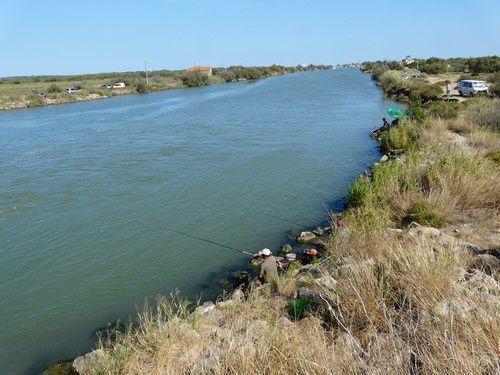 L'embouchure de l'Aude