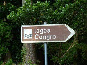 Safari :  le lac Congre