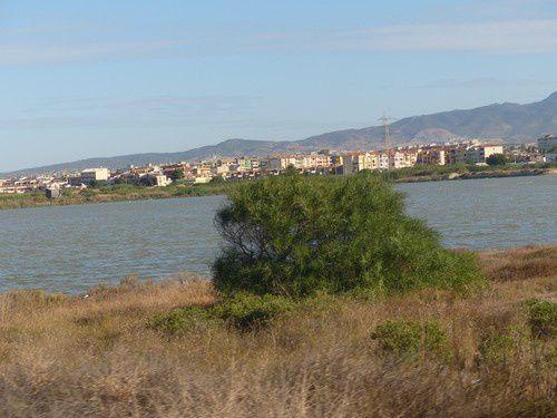 Des flamants roses dans les marais salants de Cagliari