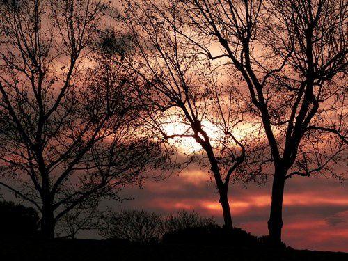 Le ciel de Vinassan pendant les soirs de décembre 2016