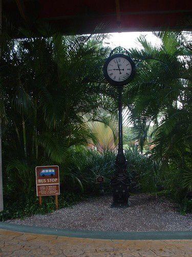 Ma vie à Punta Cana , en République Dominicaine.