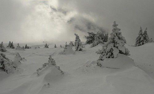 &quot&#x3B; Balades &amp&#x3B; nous &quot&#x3B; nous invite sous la neige