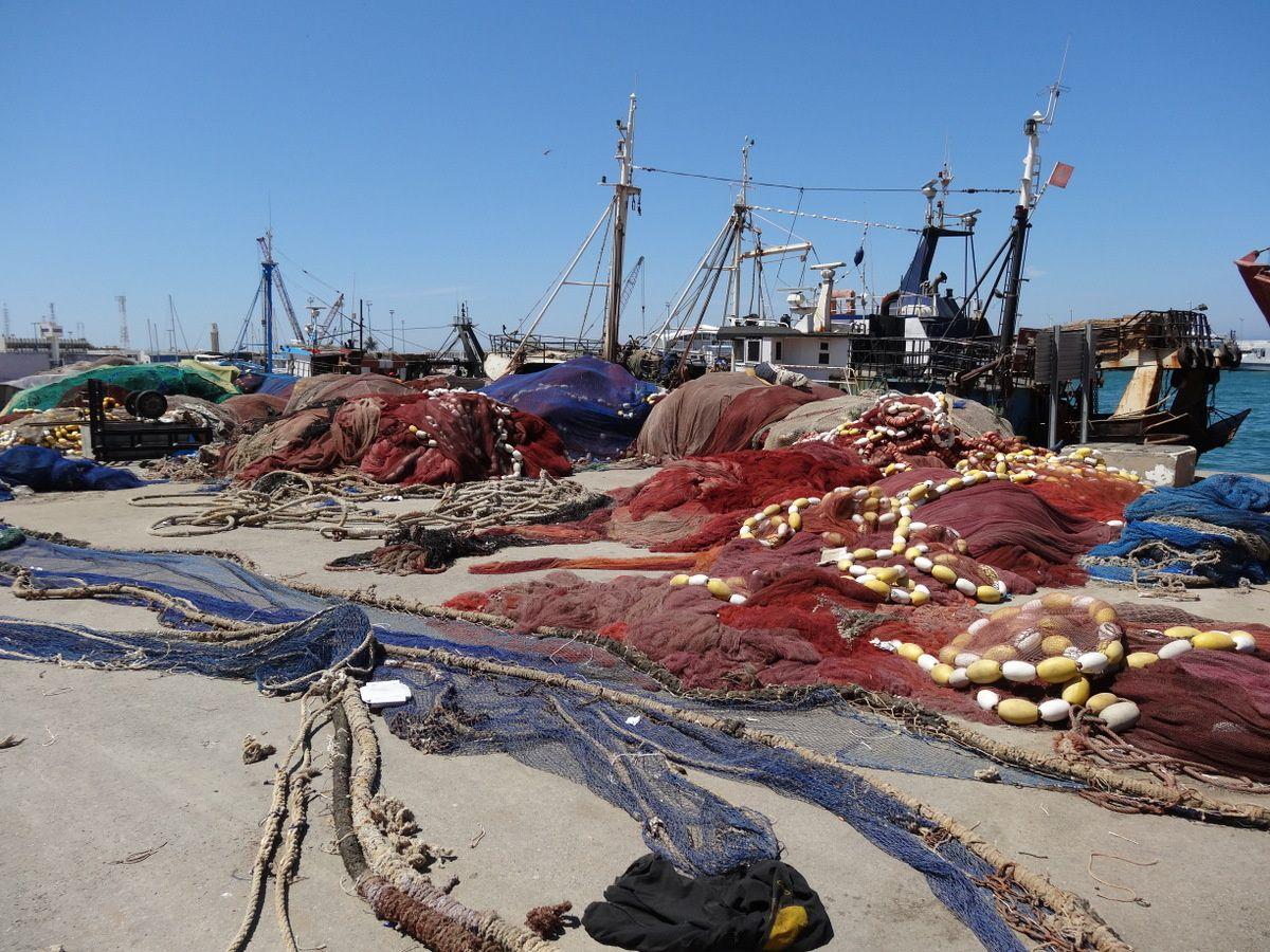 La vie et les couleurs du port de pêche de Tanger