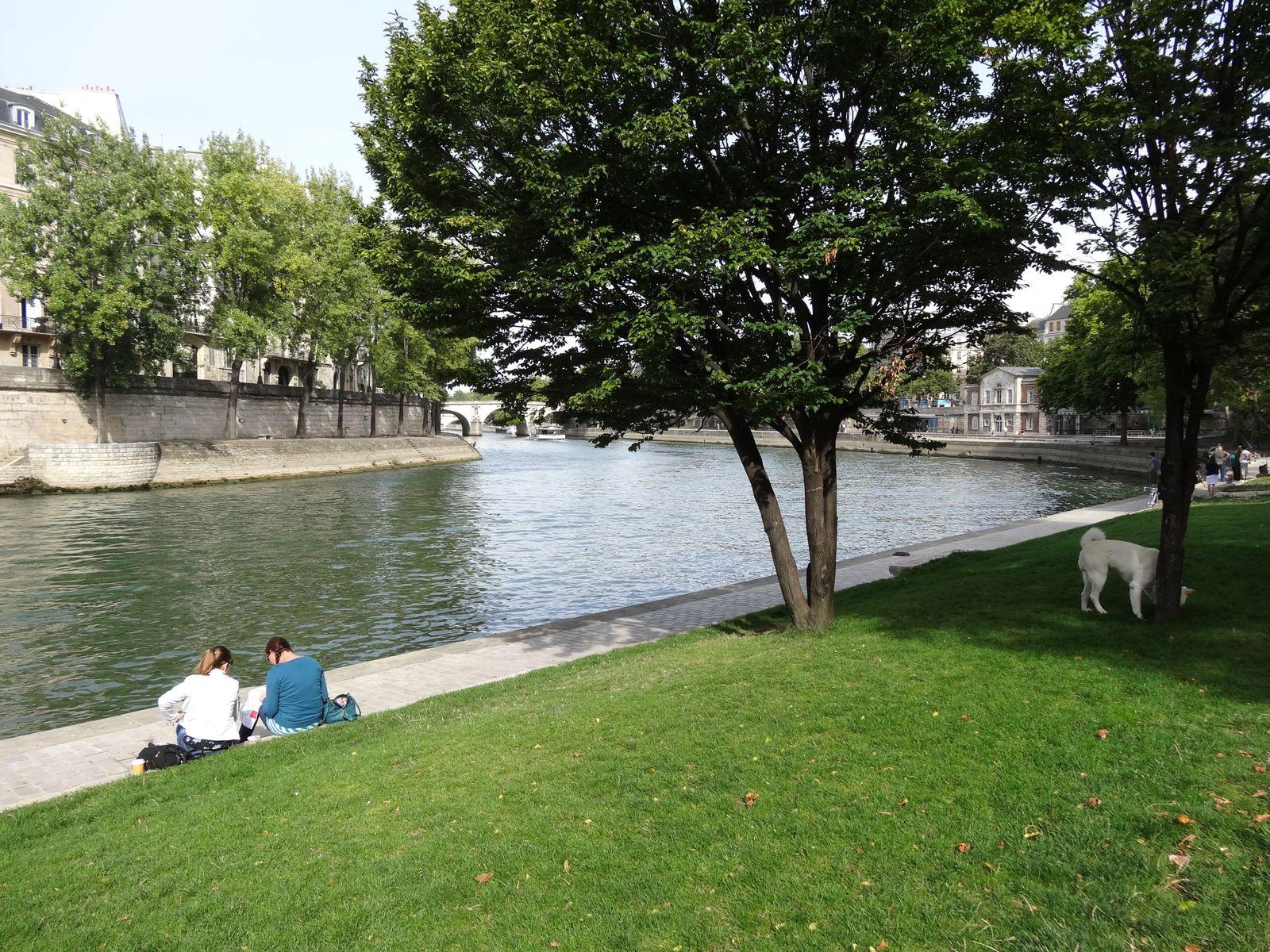 Sans voiture le dimanche des Tuileries à la Bastille