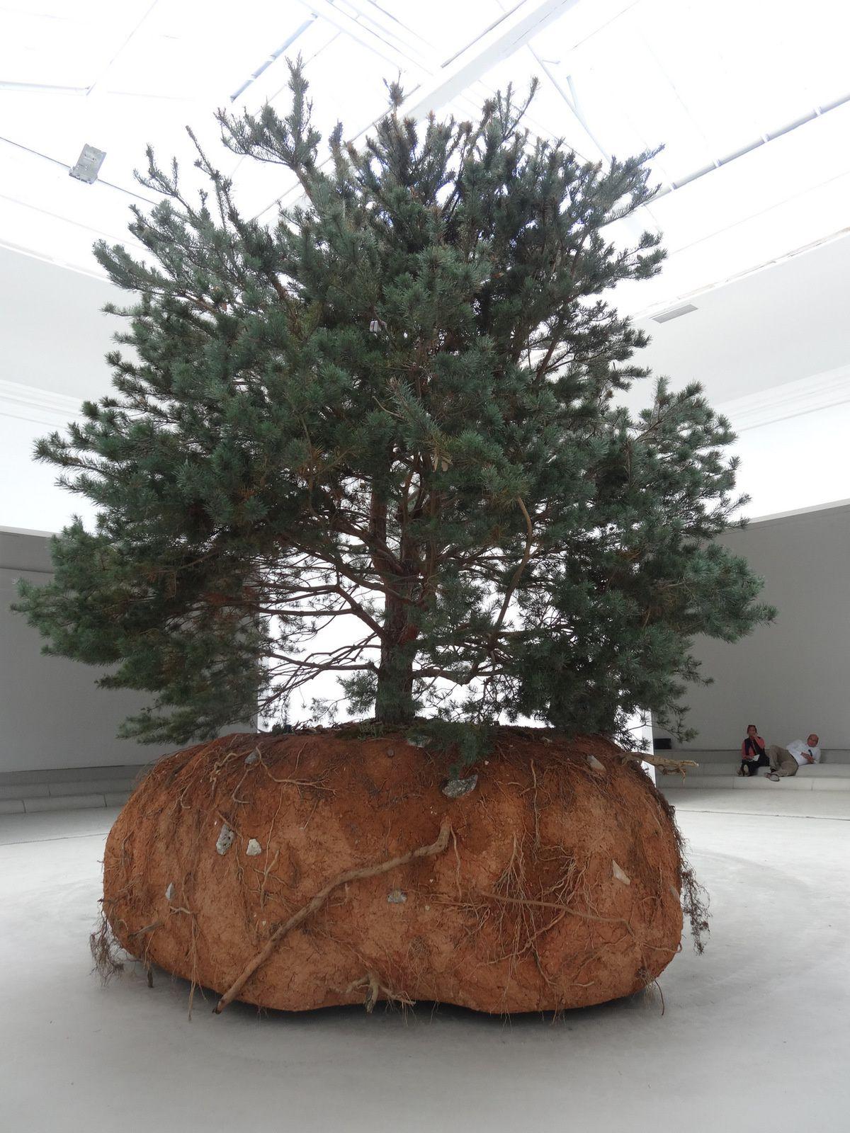 un arbre qui se déplace en fonction de ses montées de sève et autres paramètres