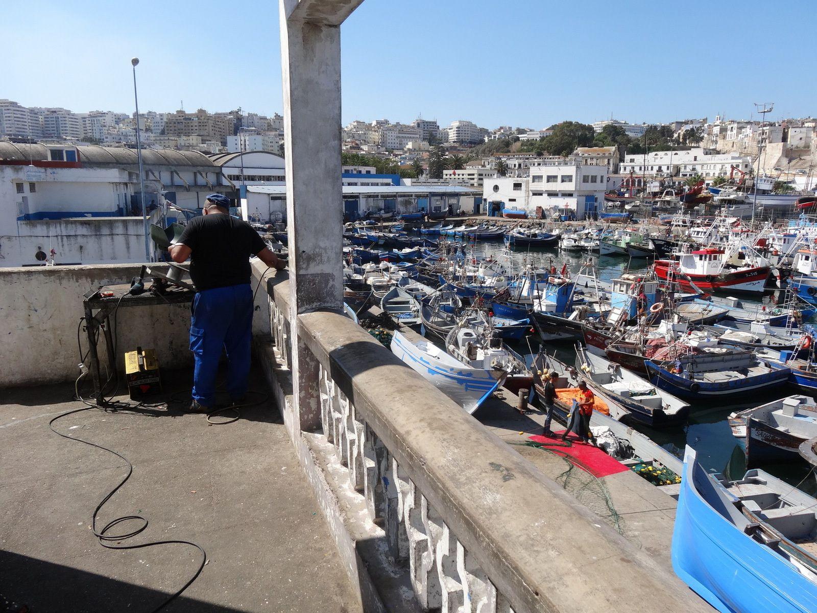 Port de pêche de Tanger derniers instants (5 photos / septembre 2016)