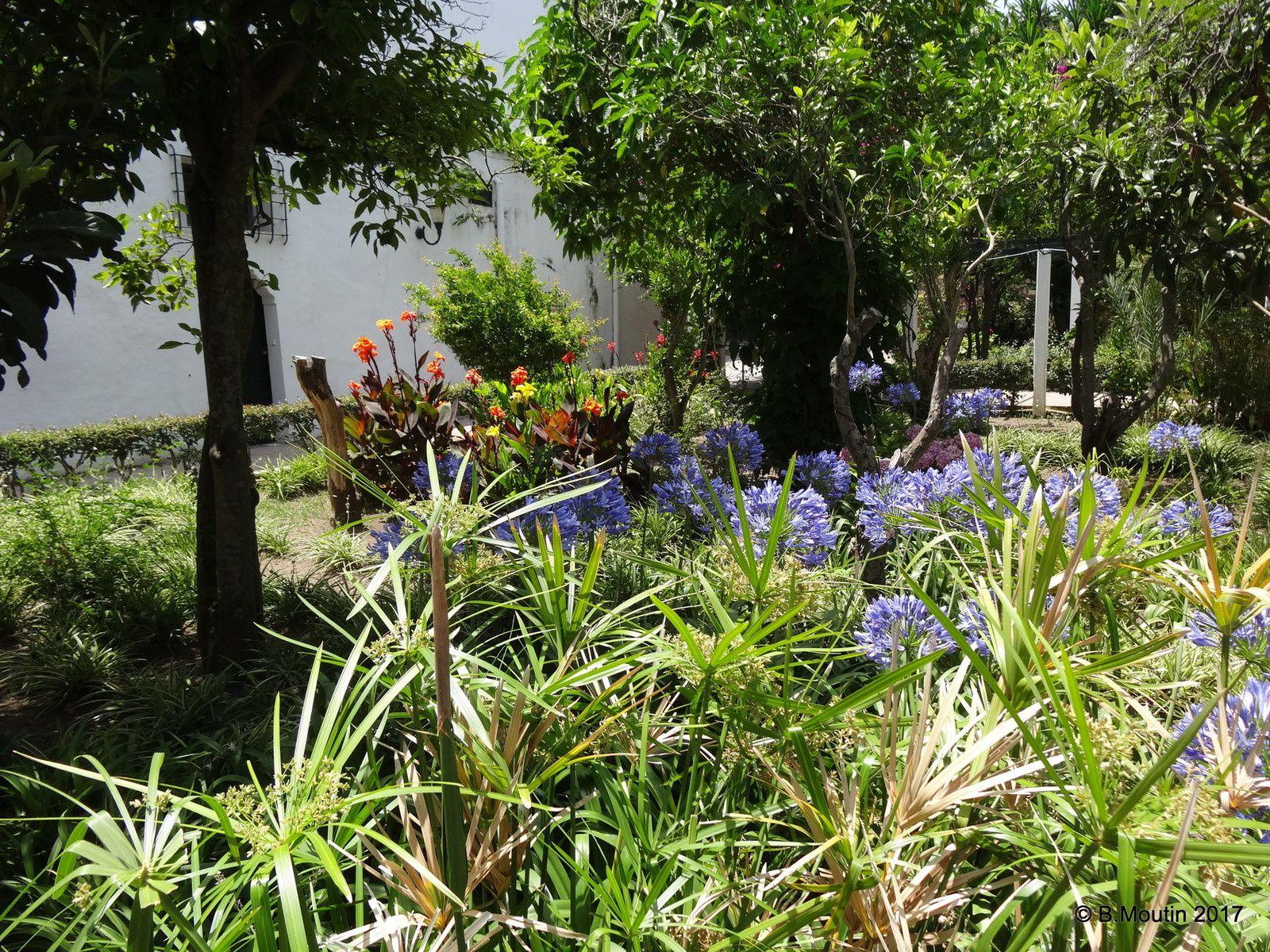 Un peu de fraîcheur colorée dans le jardin du Musée de la Kasbah à Tanger (4 photos)