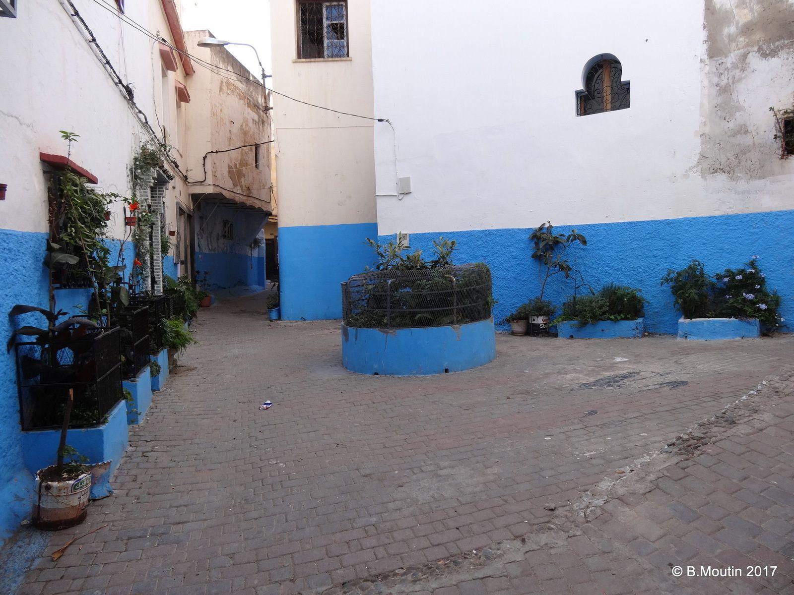 Fleurissement et plantations dans la Médina de Tanger