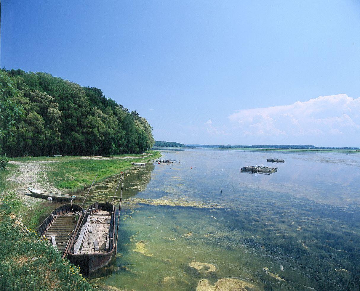 De forêt en étang au Domaine de Lindre - Crédits : Conseil Général de la Moselle