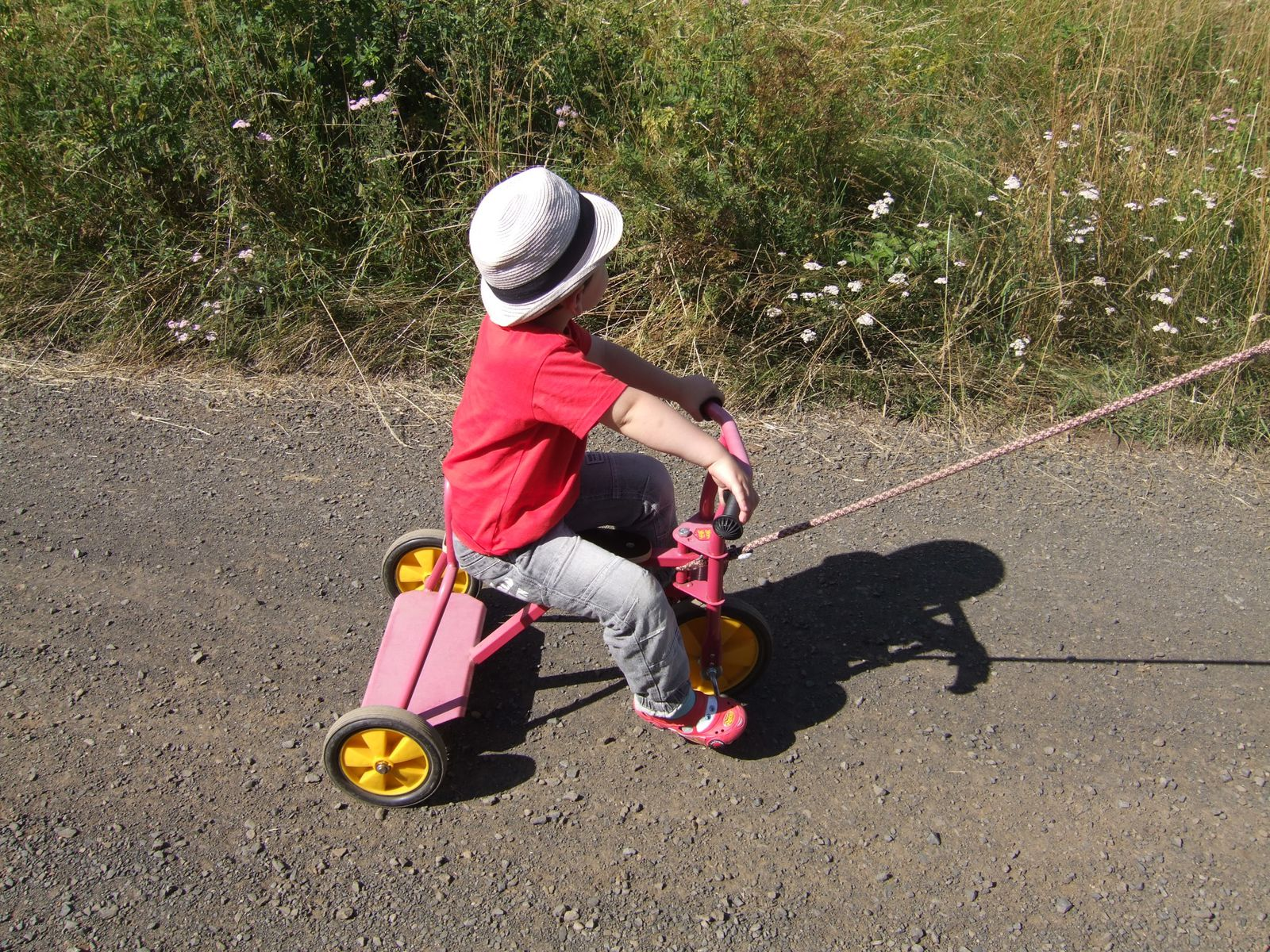 apprentissage du tricycle