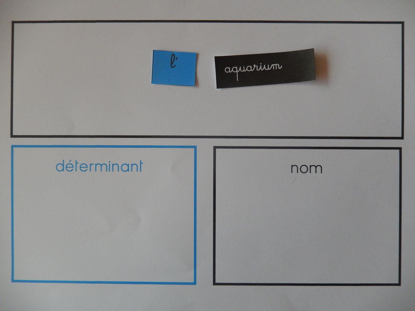 Le déterminant : introduction à la notion de déterminant selon la pédagogie Montessori