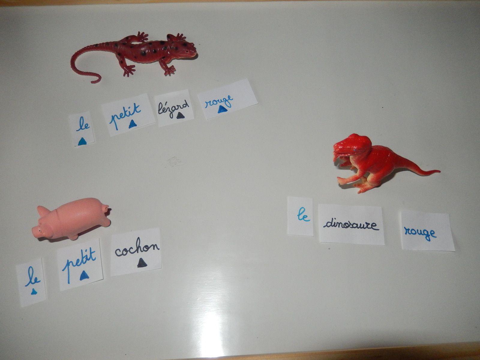 l'adjectif : introduction à la notion d'adjectif selon la pédagogie Montessori