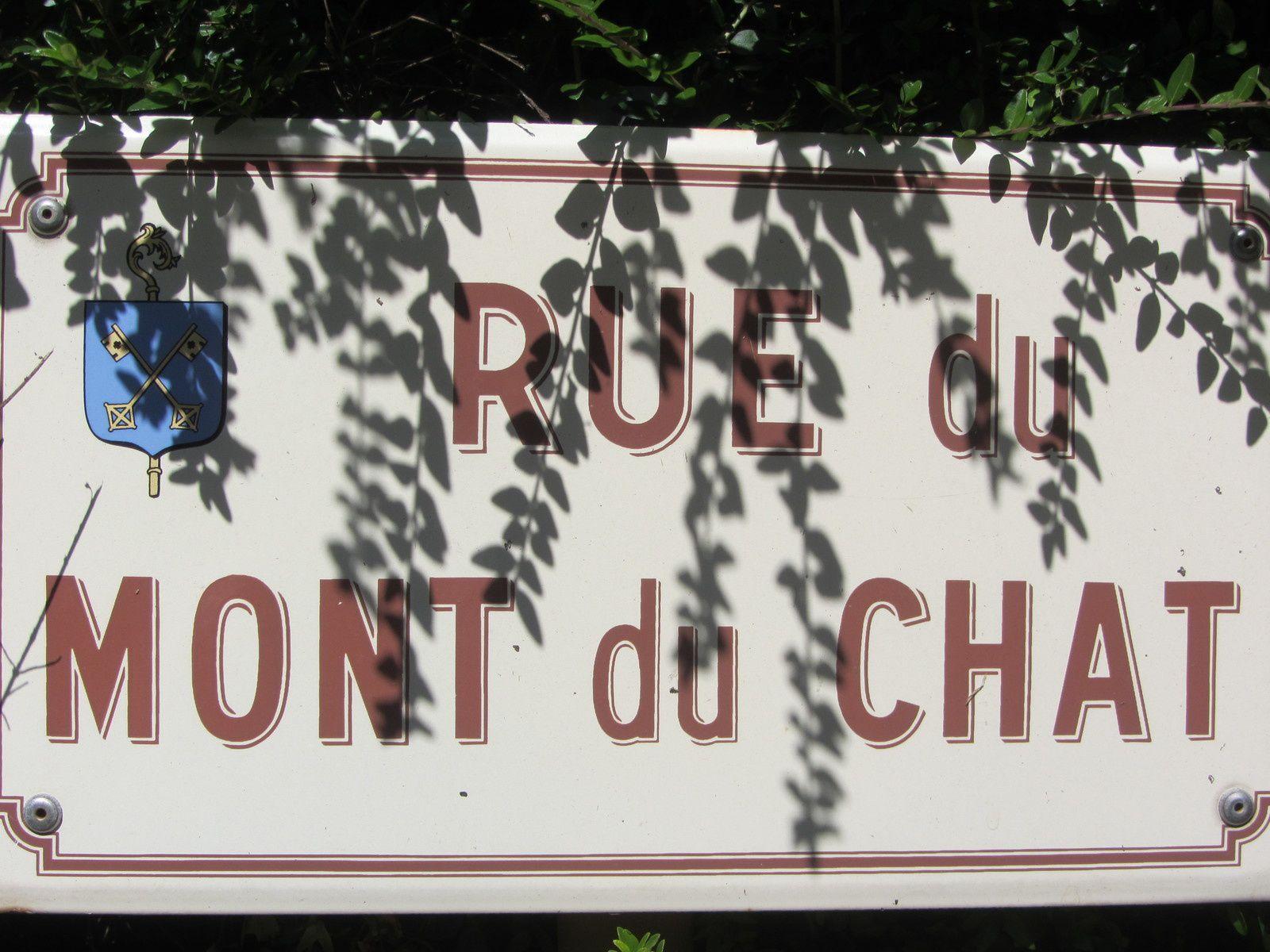Nous qui sommes du quartier de Monchat à Lyon , nous avons forcément remarqué le nom de la rue où nous avions garé la voiture.