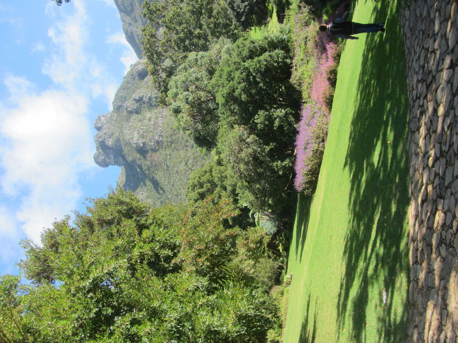 Ce jardin est situé sur le flanc oriental de la montagne de la Table (Table Mountain).  Le jardin a été fondé en 1913, pour préserver la flore d'Afrique du sudIl jouit d'une renommée internationale.