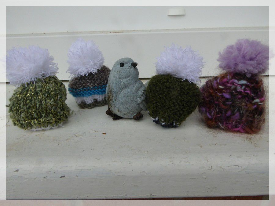 Petits bonnets and cie....