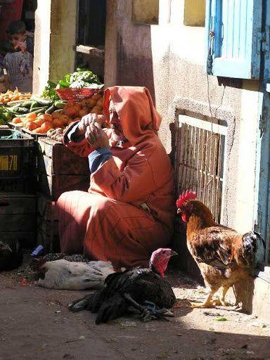 Mon voyage au Maroc