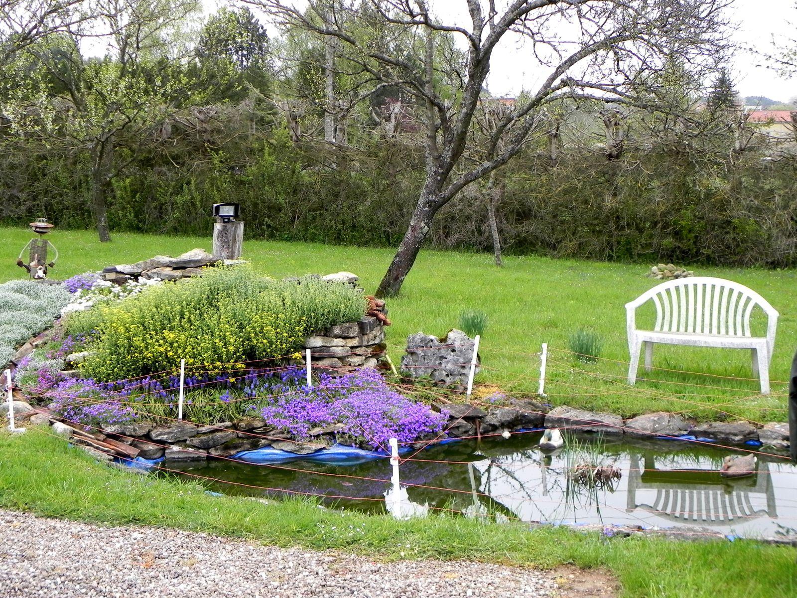 Bassin aménagé par mon cousin à Dompcevrin (avec des poissons rouges)
