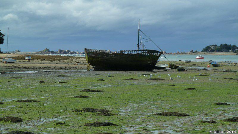 Epave de bateau entre les stations balnéaires de Buguélès et de Port-Blanc...
