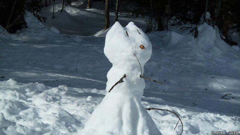 Chat de neige !
