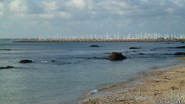 Quelques voiliers sont sortis mais vu le nombre de mats visibles dans le port, la plupart sont restés au chaud.