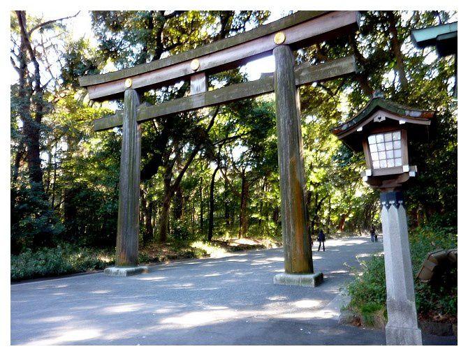 torii en bois de cèdre
