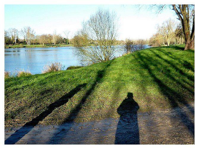 ombres d'hiver à l'étang de Luisant