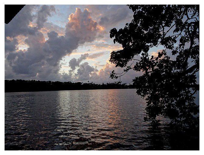 Costa-Rica : jour 4 : Tortuguero