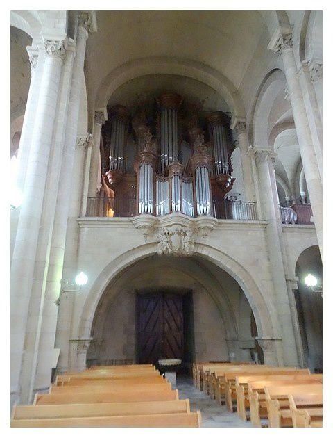 On sait qu'un orgue existait déjà à Saint-Apollinaire en 1392. En 1751 Mgr Alexandre Milon de Mesme, évêque de Valence, commande un orgue doté de 45 jeux. Ainsi, de 1751 à 1753 le facteur suisse Samson Scherrer (et non son fils Ludwig, dit Louis Scherrer, venu seulement à Valence pour signer le contrat), construit un nouvel orgue, qui se trouve en très mauvais état à la Révolution. Il est restauré par François et Joseph Collinet en 1813 puis 1835, ensuite démonté pendant des travaux de réfection de la cathédrale. En 1898, les ateliers de Cavaillé-Coll, sous la direction de Charles Mutin, installent un nouvel instrument dans le buffet de Scherrer. L'orgue est enfin restauré en 1985 par Yves Kœnig, puis reçoit par le même facteur une rénovation, inaugurée en mai 2014.