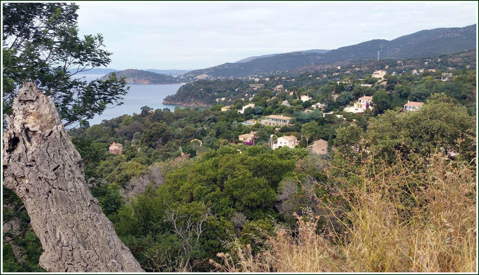 275 -  Photos, en passant par le Lavandou, Rayol-Canadel-sur-Mer et Saint-Tropez...