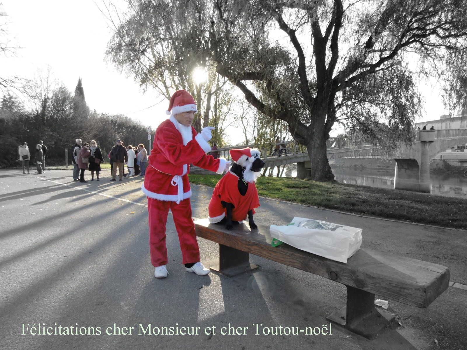 Le projet de ce sympathique homme rouge c'est de faire tirer un traîneau par son toutou-Noël, transportant ainsi un jeune enfant.... pas gagné....!