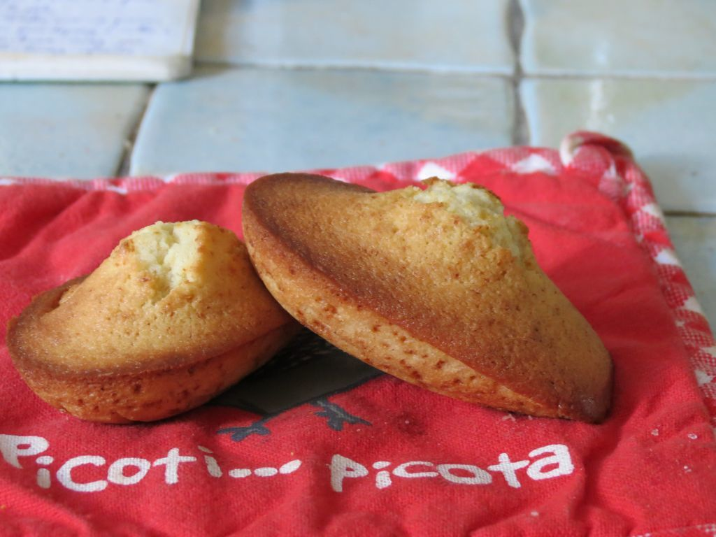Madeleines cannelle-citron