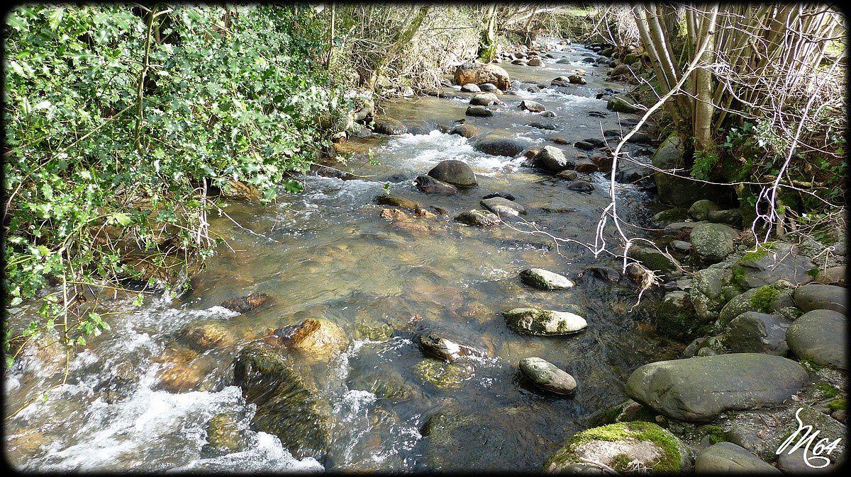 Un petit ruisseau
