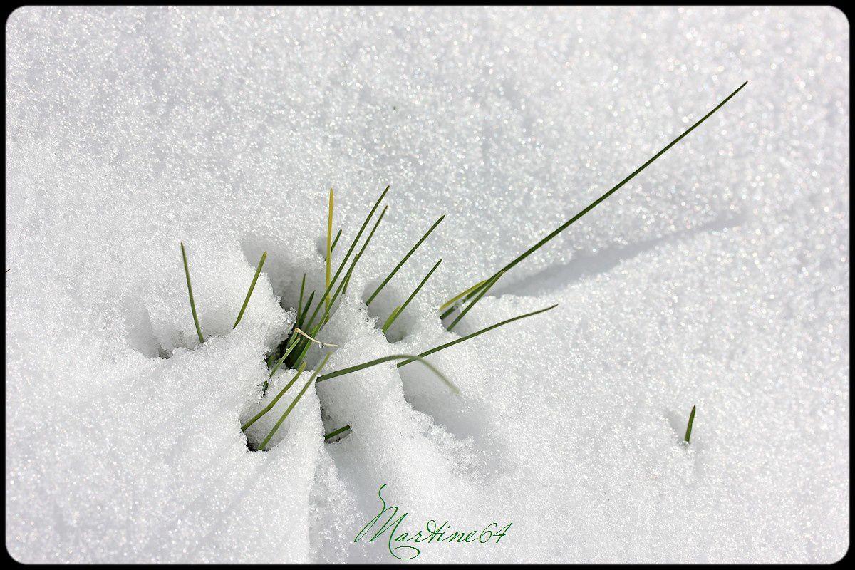 La neige est là ....