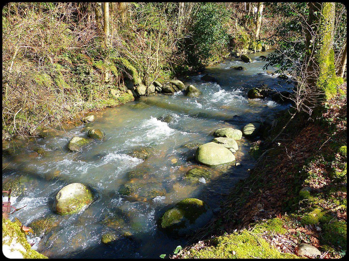Un petit ruisseau .....