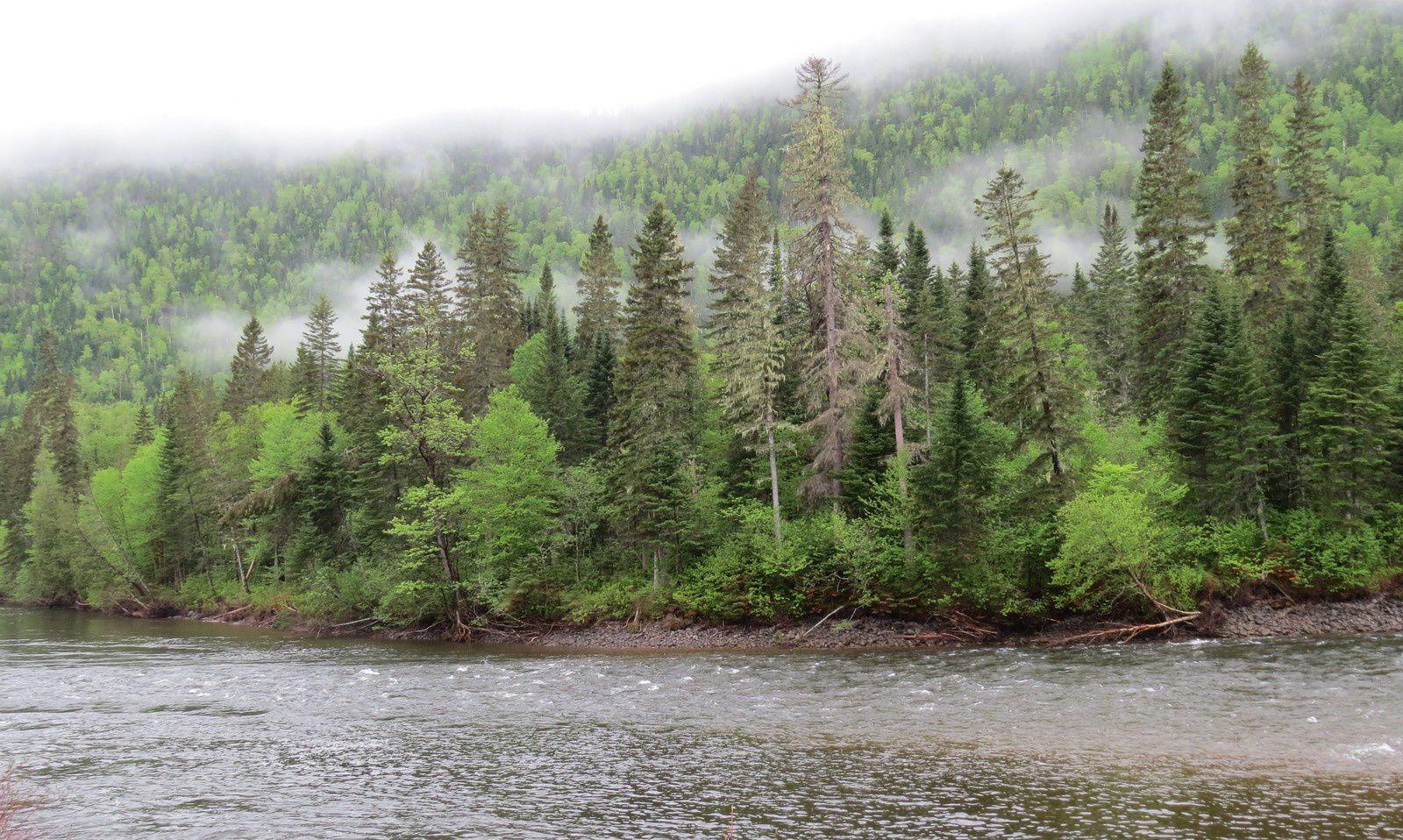 ALASKA 2015 ( 1.- Le Canada d'Est en Ouest)