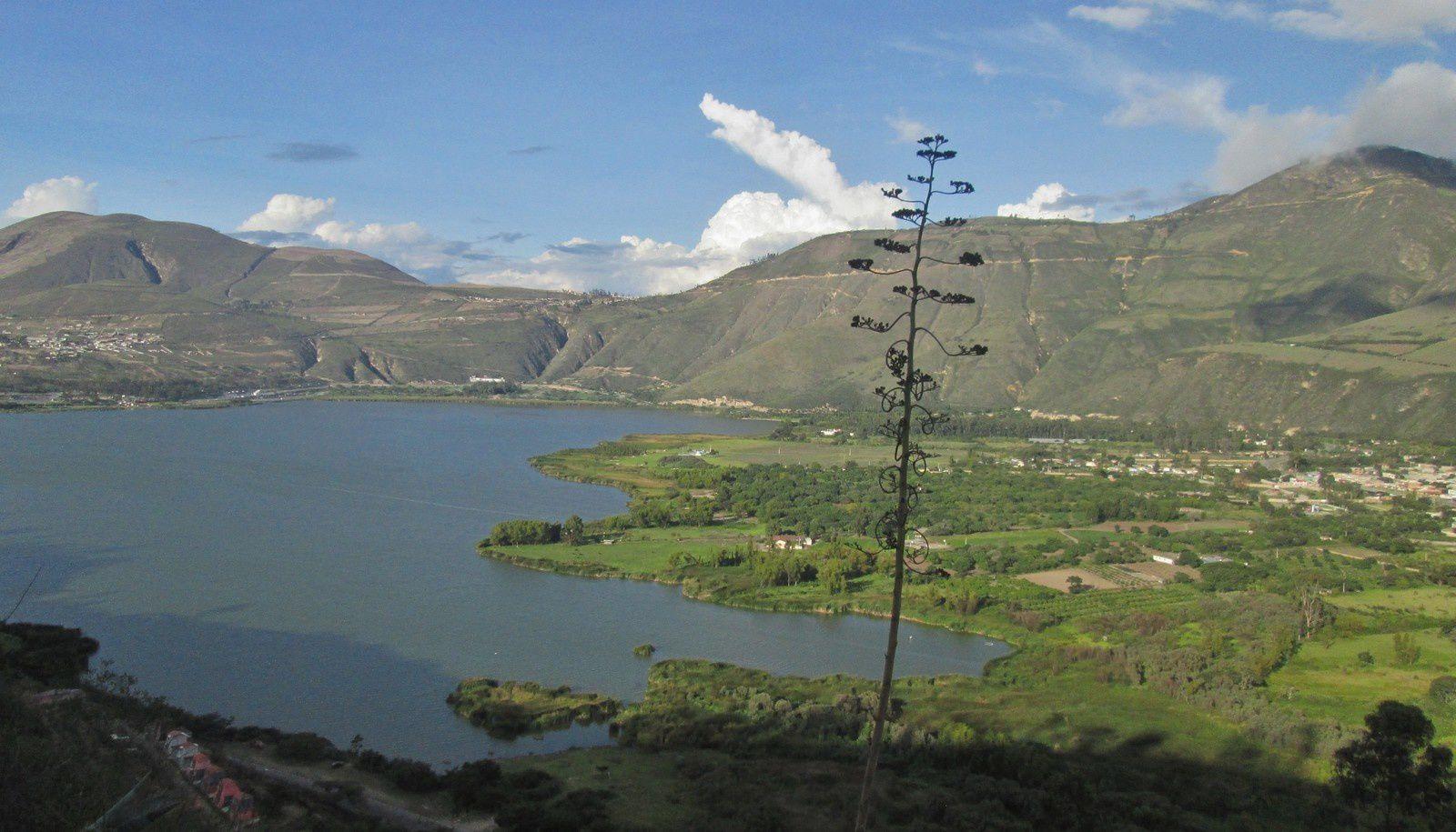 TRANSAMERICA (3.4.- Equateur)