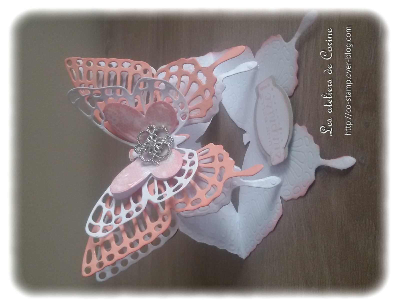 Carte chevalet papillon