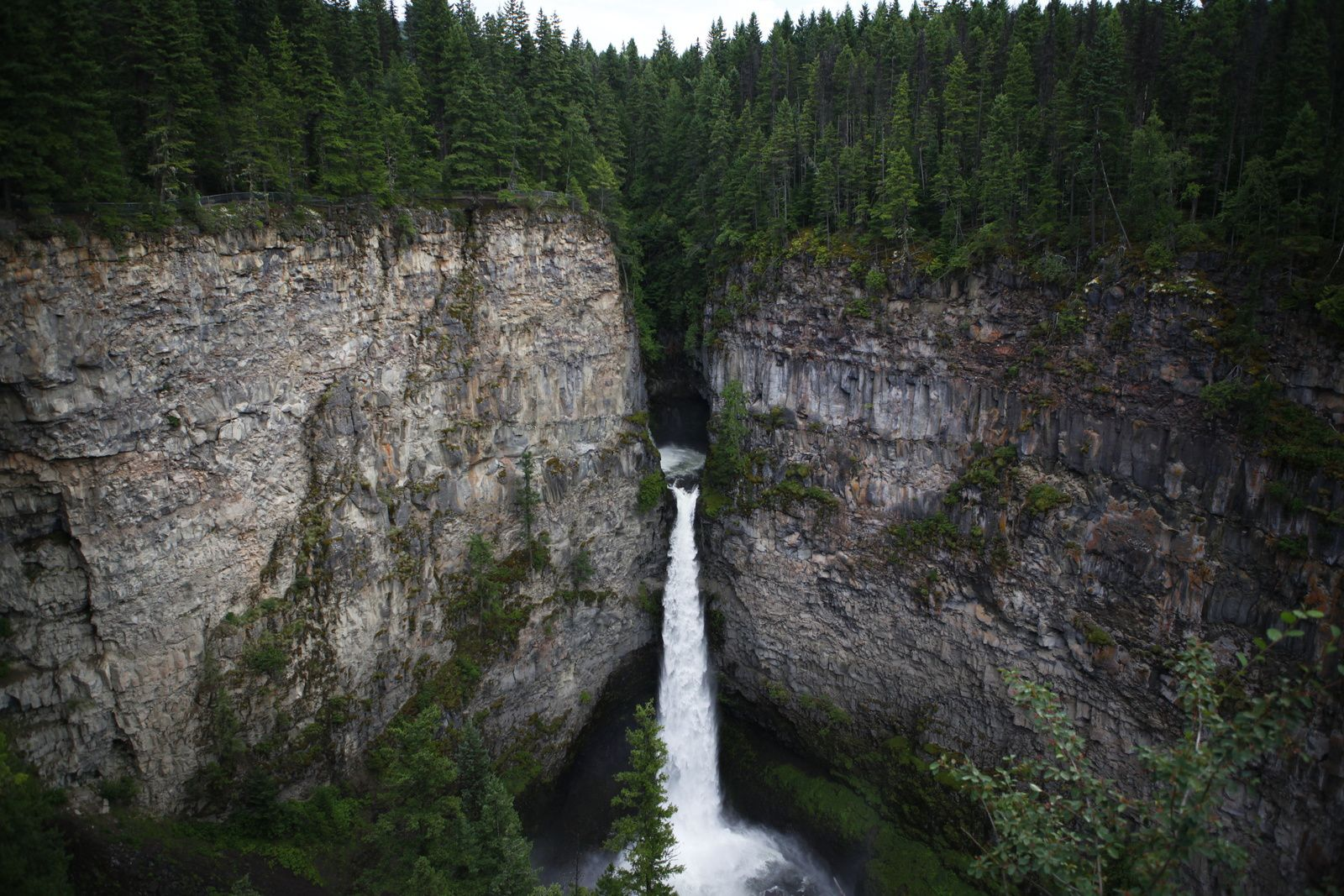 De Vancouver à Calgary : Jour 5