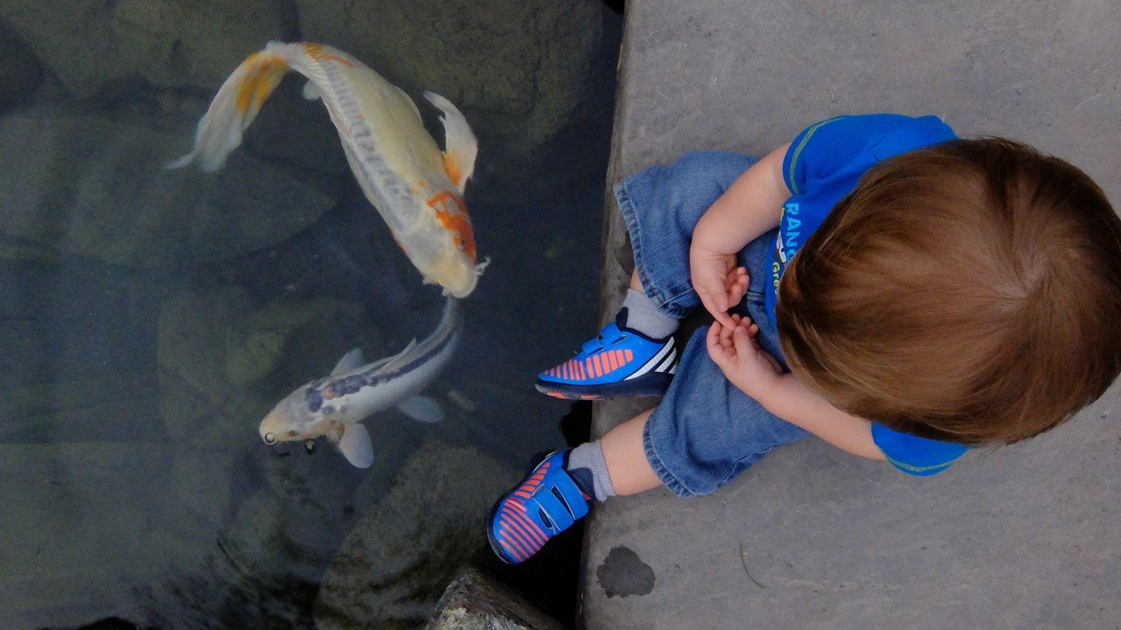 Première visite au Jardin Botanique pour Jojo