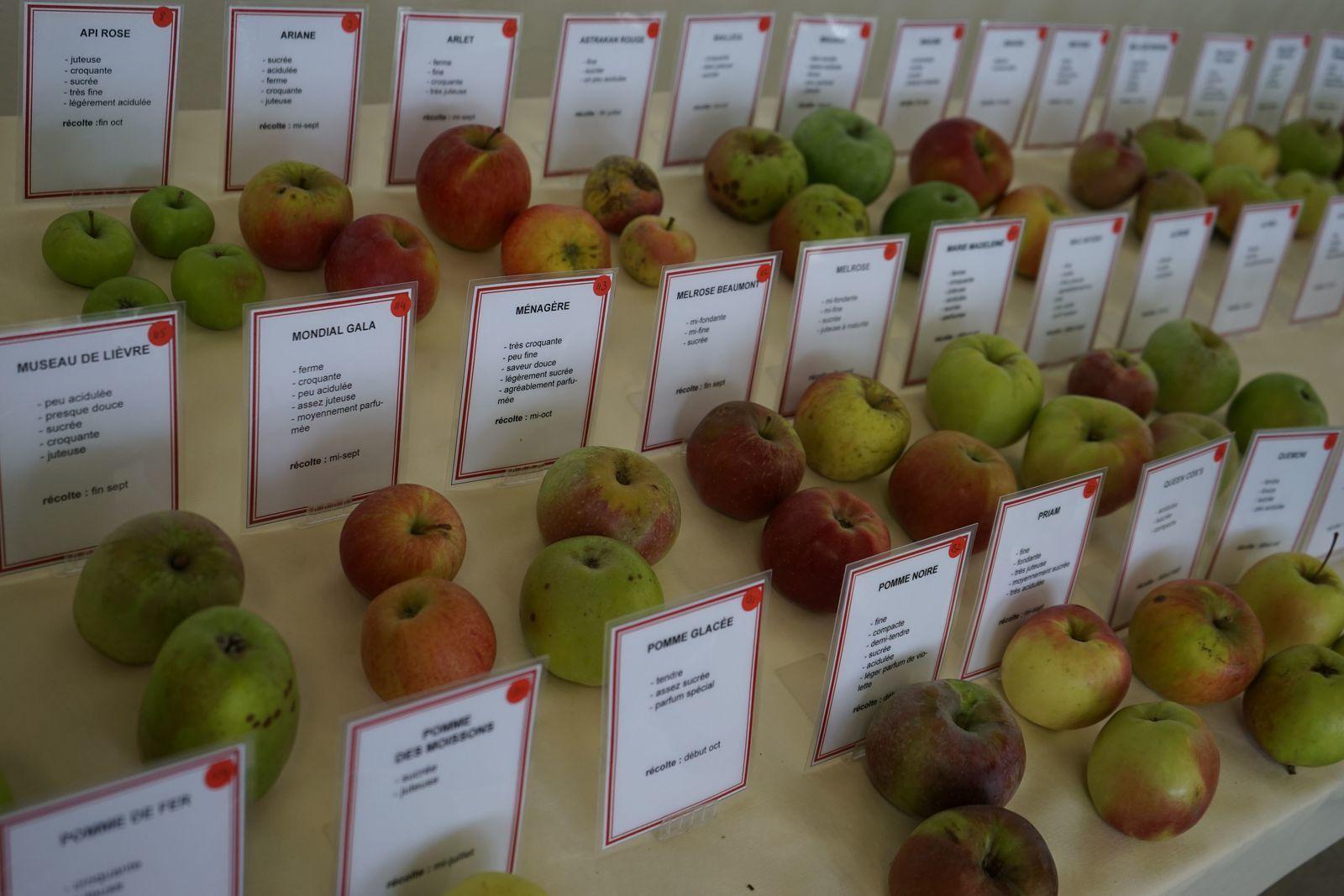 La salle de jus de pommes.
