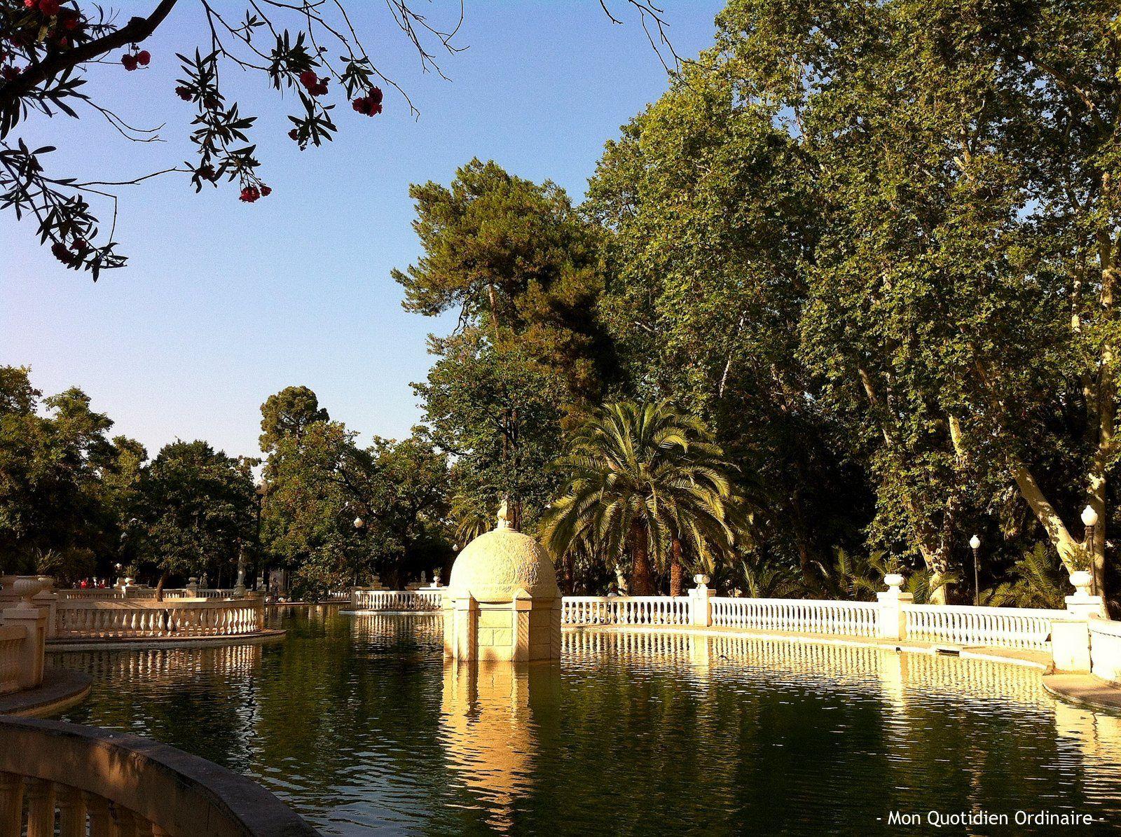☼ ¡Bienvenidos a Castellón de la Plana! ☼