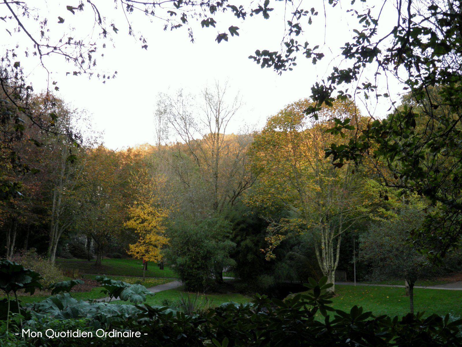 Le Jardin du Conservatoire Botanique de Brest